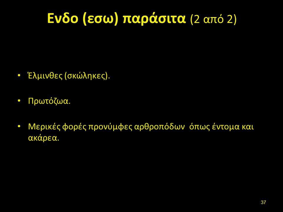 Εκτο (εξω) παράσιτα (ectoparasites) (1 από 2)