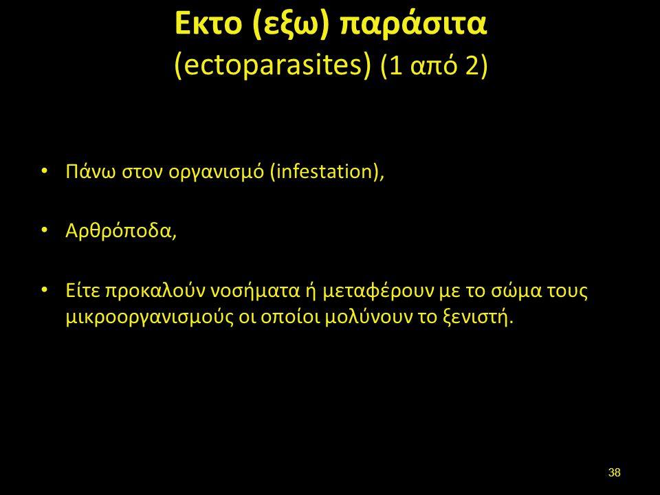 Εκτο (εξω) παράσιτα (2 από 2)