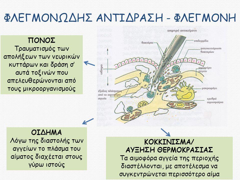 Φλεγμονωδης αντιδραςη - φλεγμονη