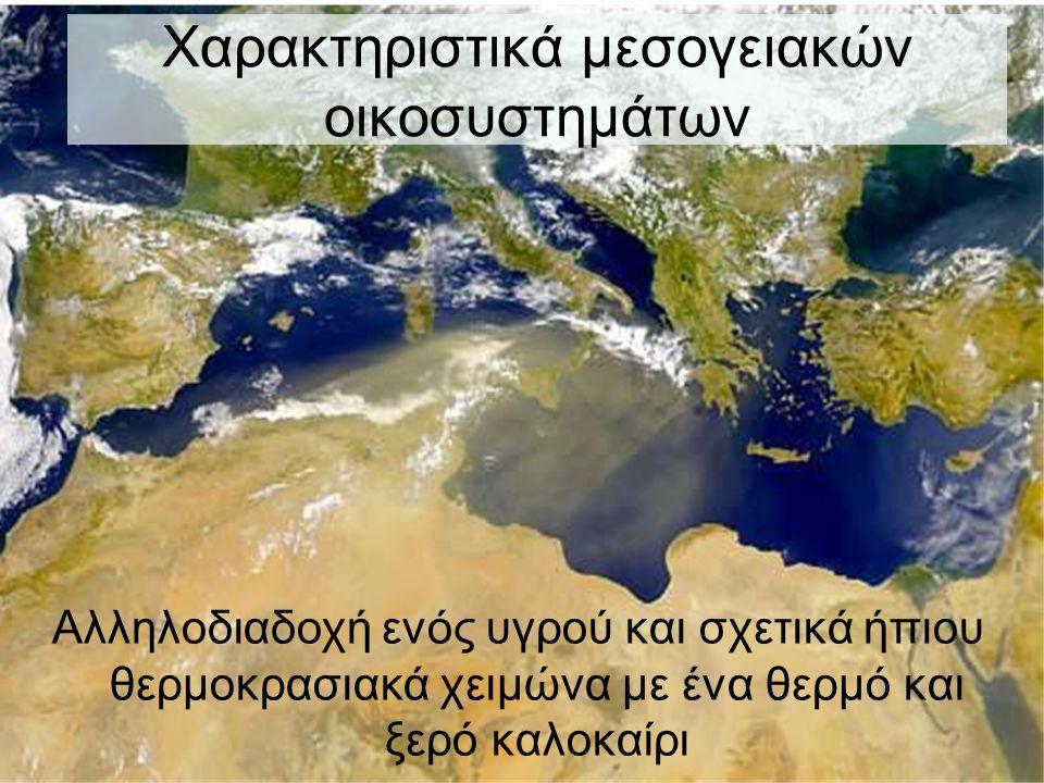 Χαρακτηριστικά μεσογειακών οικοσυστημάτων