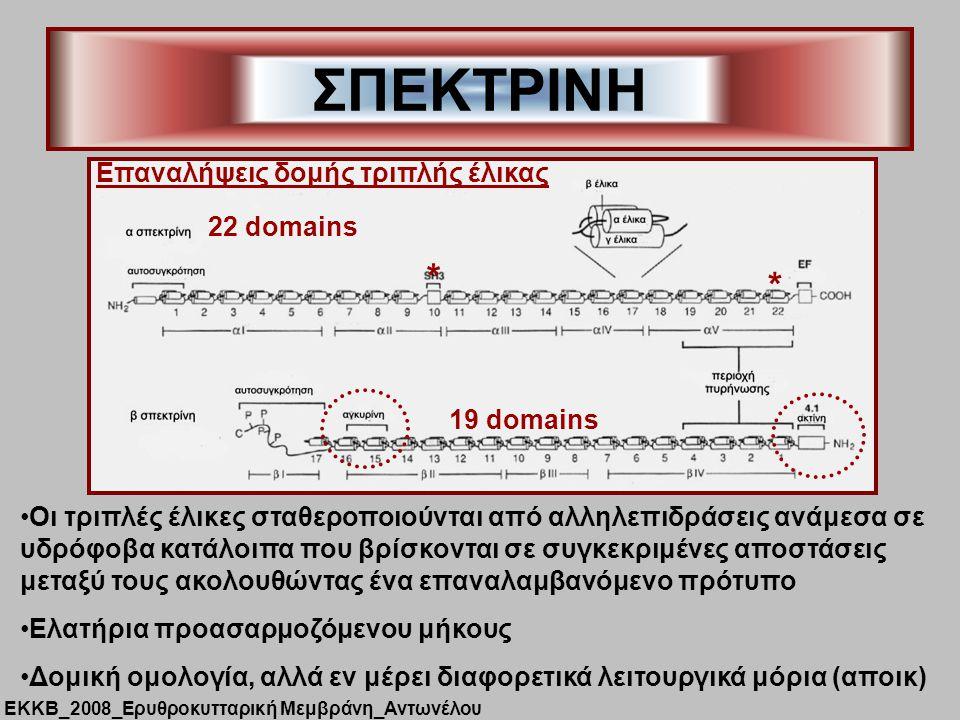 ΣΠΕΚΤΡΙΝΗ * Επαναλήψεις δομής τριπλής έλικας 22 domains 19 domains
