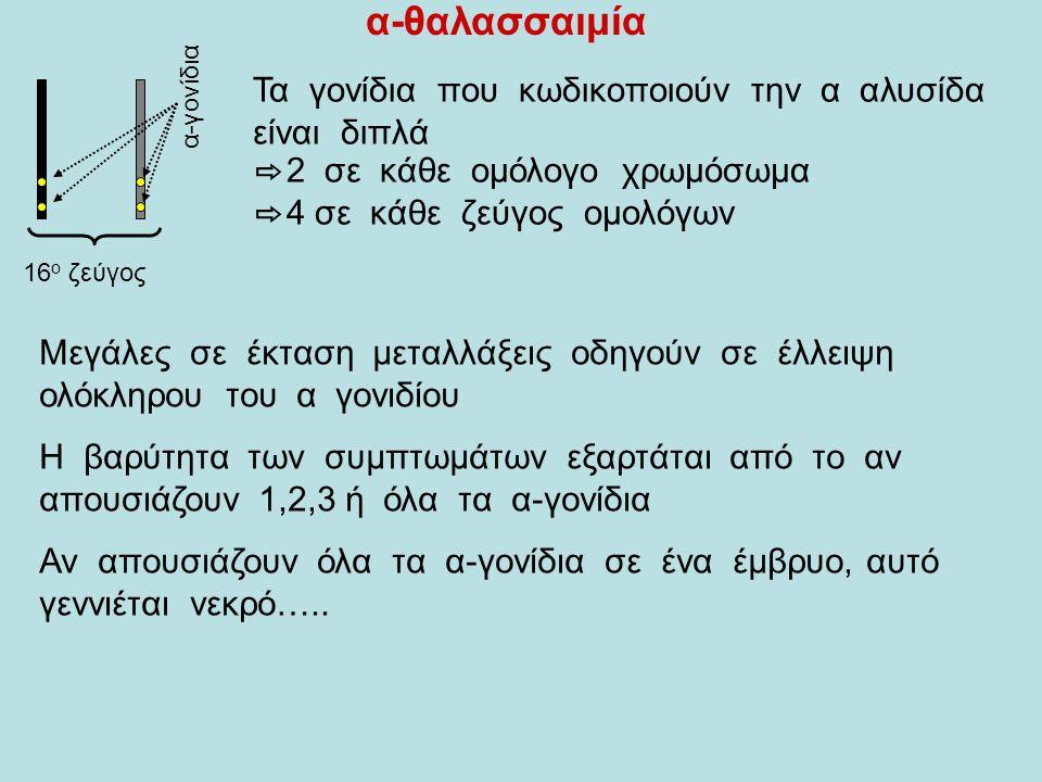 α-θαλασσαιμία