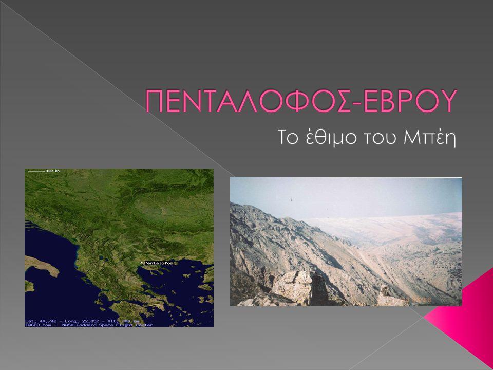ΠΕΝΤΑΛΟΦΟΣ-ΕΒΡΟΥ Το έθιμο του Μπέη