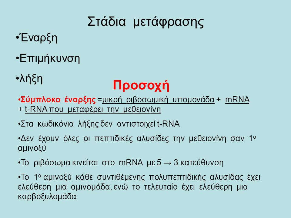 Στάδια μετάφρασης Προσοχή Έναρξη Επιμήκυνση λήξη