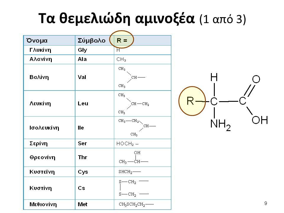 Τα θεμελιώδη αμινοξέα (2 από 3)