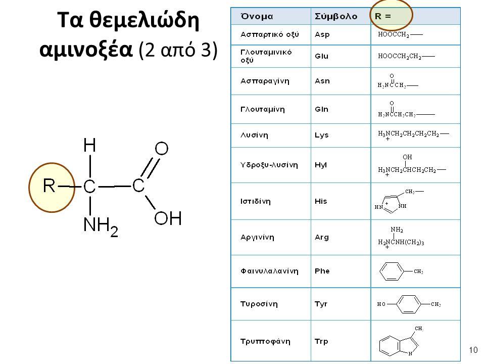 Τα θεμελιώδη αμινοξέα (3 από 3)