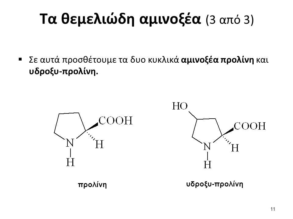 Η διπλή φύση των αμινοξέων