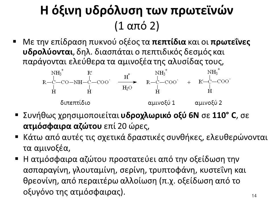 Η όξινη υδρόλυση των πρωτεϊνών (2 από 2)