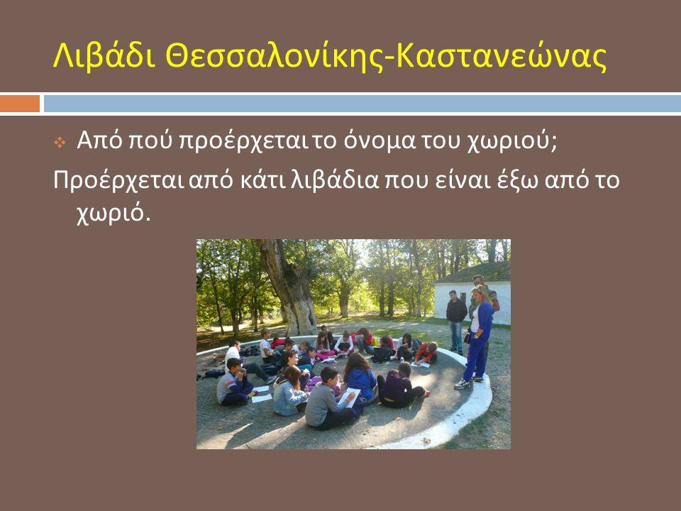 Λιβάδι Θεσσαλονίκης-Καστανεώνας