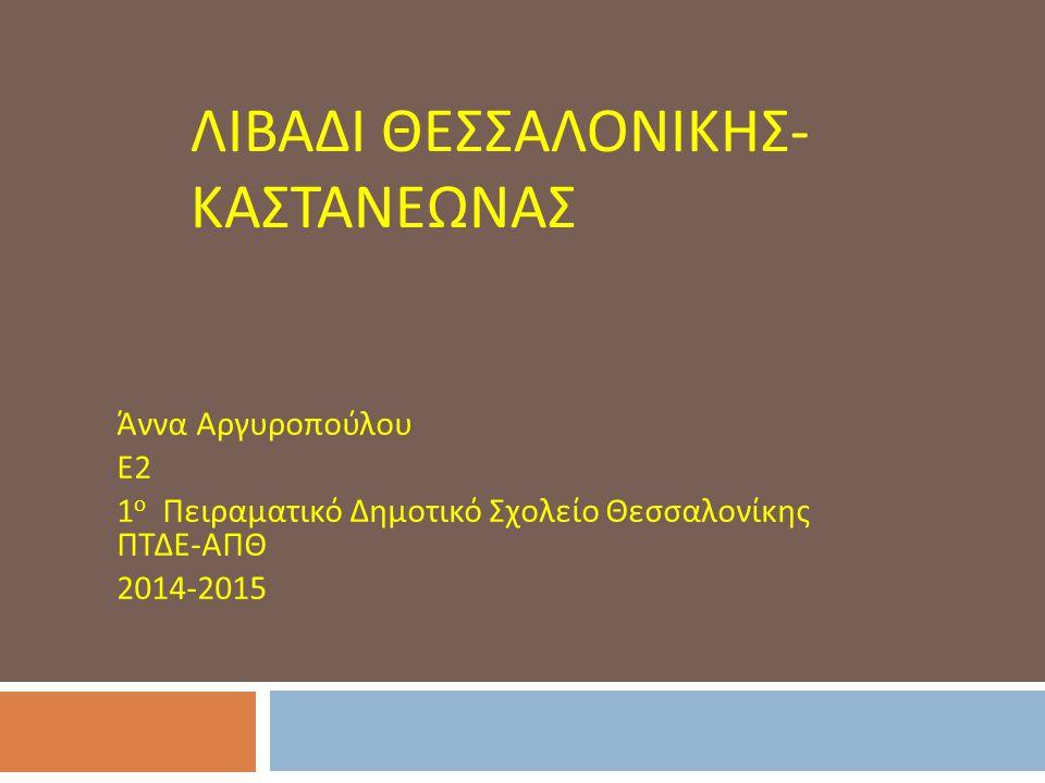Λιβαδι Θεσσαλονικης-Καστανεωνας