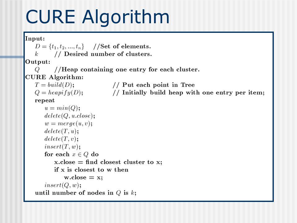 CURE Algorithm