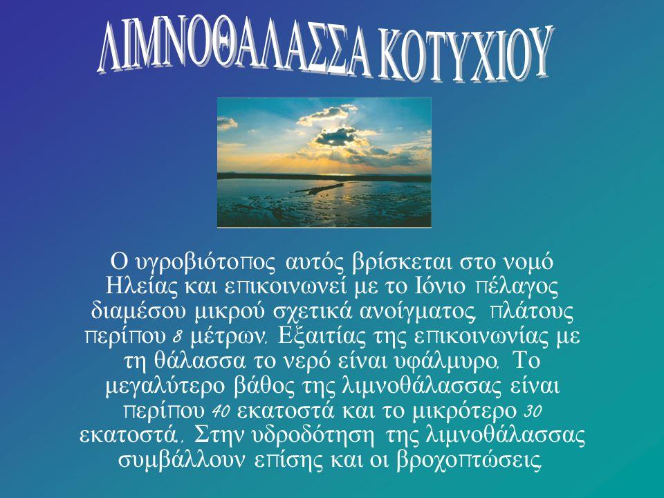 ΛΙΜΝΟΘΑΛΑΣΣΑ ΚΟΤΥΧΙΟΥ