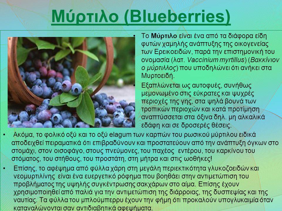 Μύρτιλο (Blueberries)