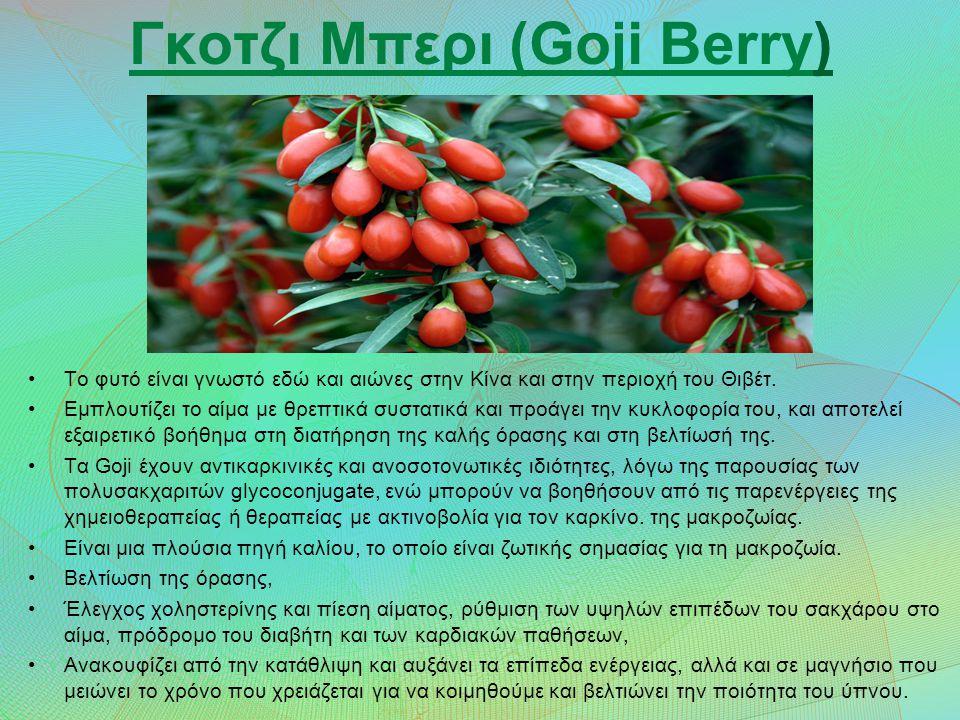 Γκοτζι Μπερι (Goji Berry)