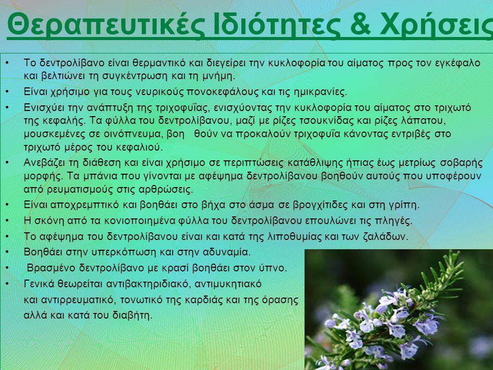 Θεραπευτικές Ιδιότητες & Χρήσεις
