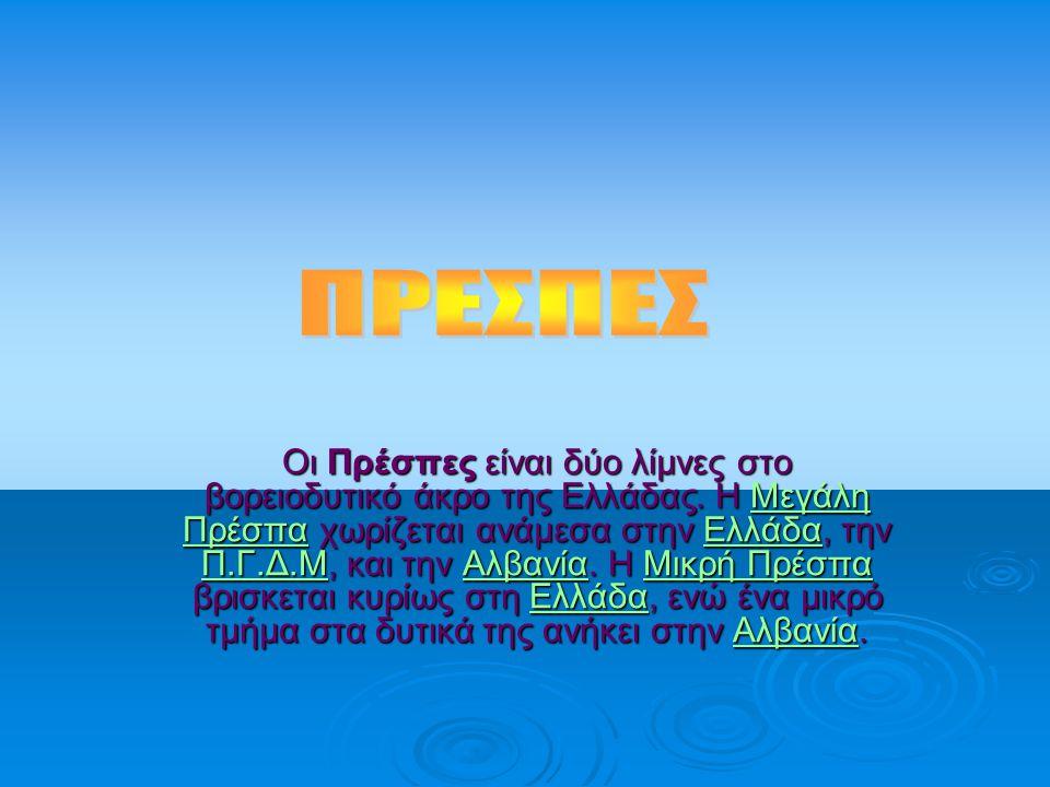 ΠΡΕΣΠΕΣ