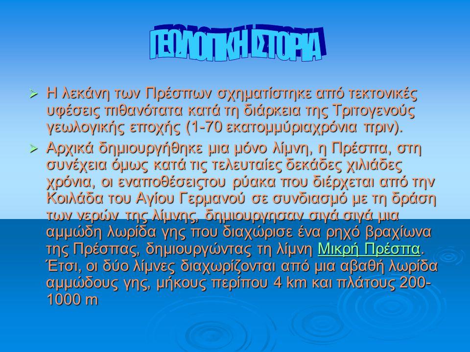 ΓΕΩΛΟΓΙΚΗ ΙΣΤΟΡΙΑ