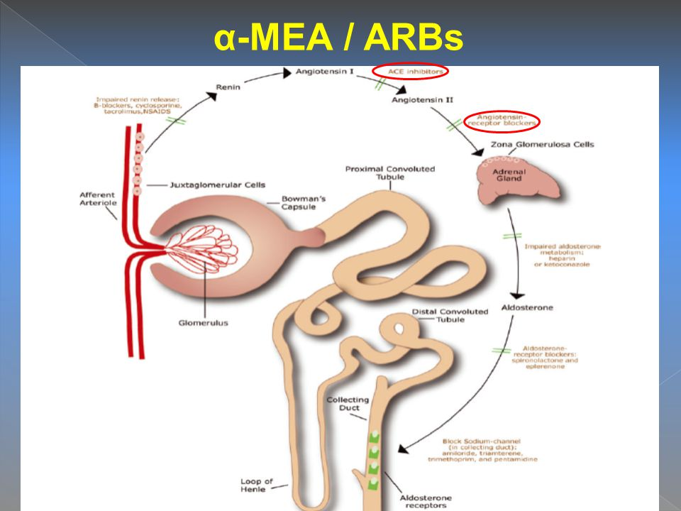 α-ΜΕΑ / ARBs