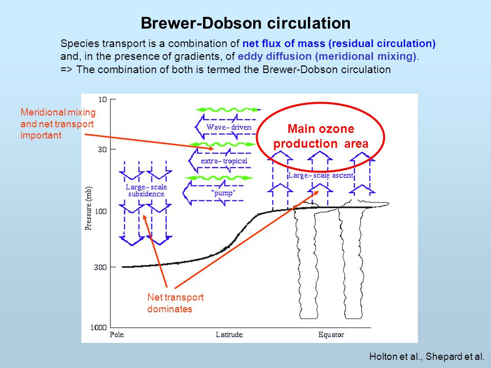 Brewer-Dobson circulation