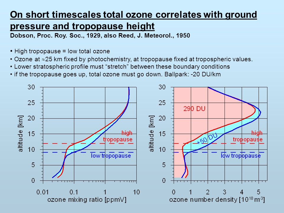 On short timescales total ozone correlates with ground pressure and tropopause height