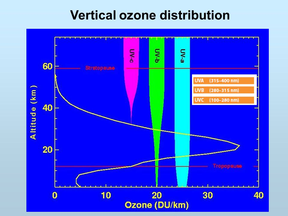 Vertical ozone distribution