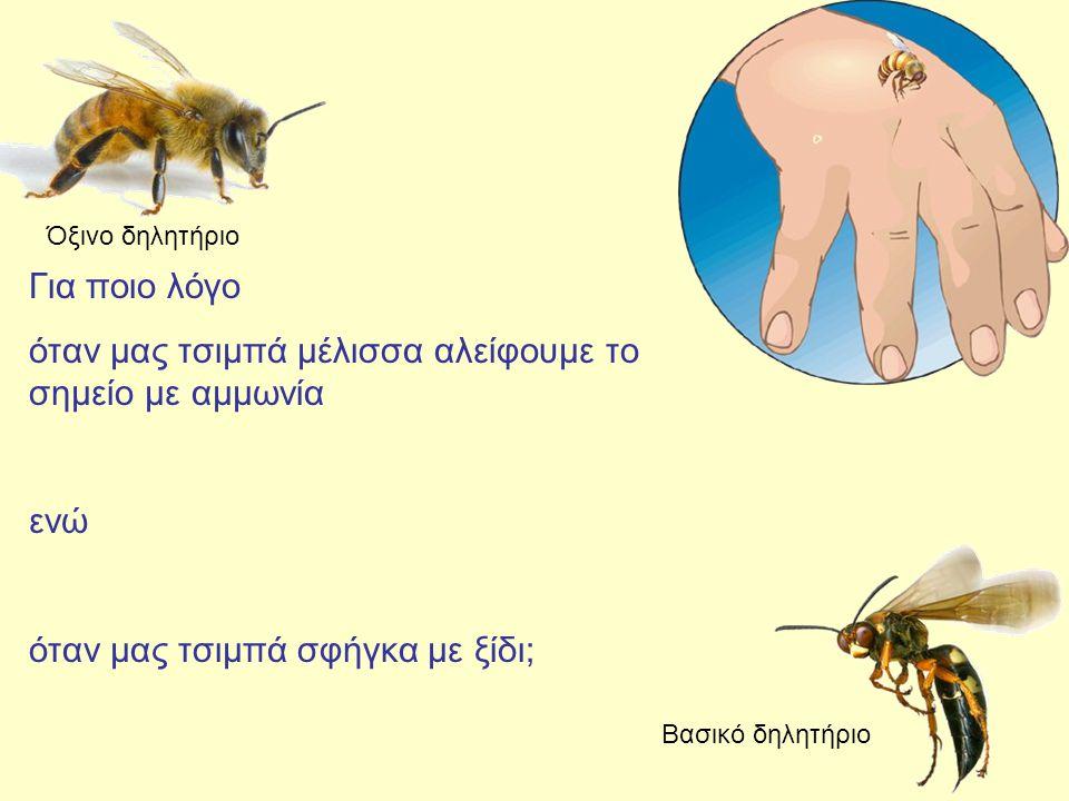 όταν μας τσιμπά μέλισσα αλείφουμε το σημείο με αμμωνία