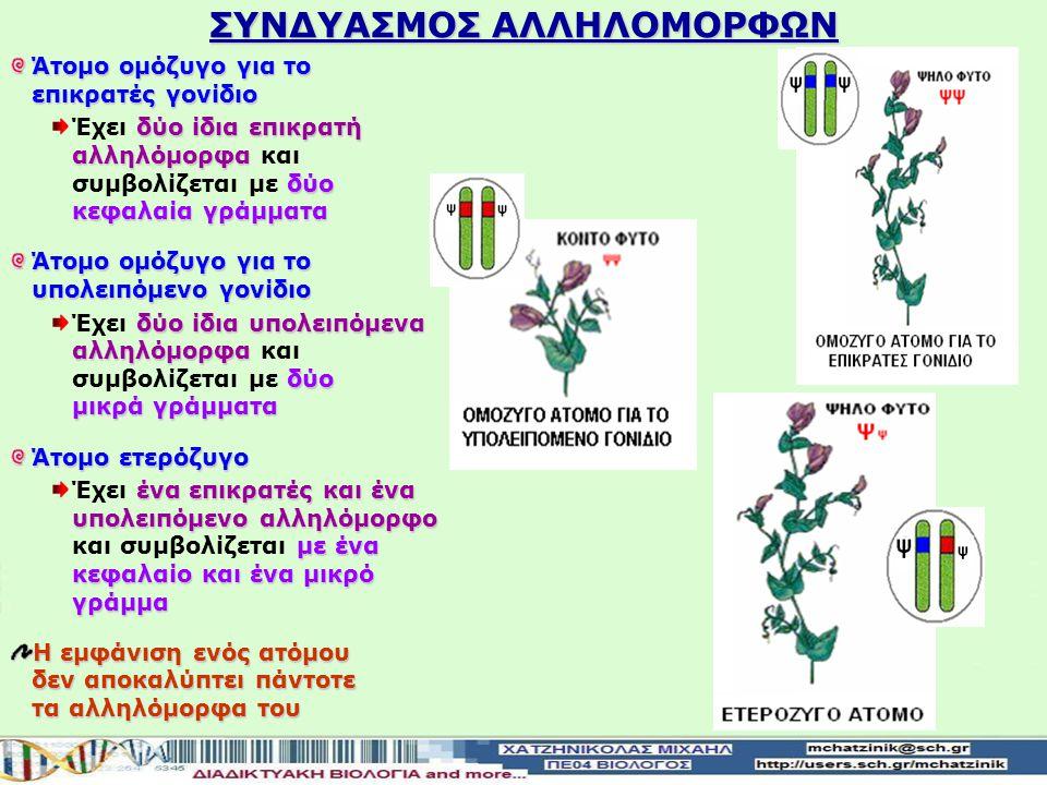 ΣΥΝΔΥΑΣΜΟΣ ΑΛΛΗΛΟΜΟΡΦΩΝ