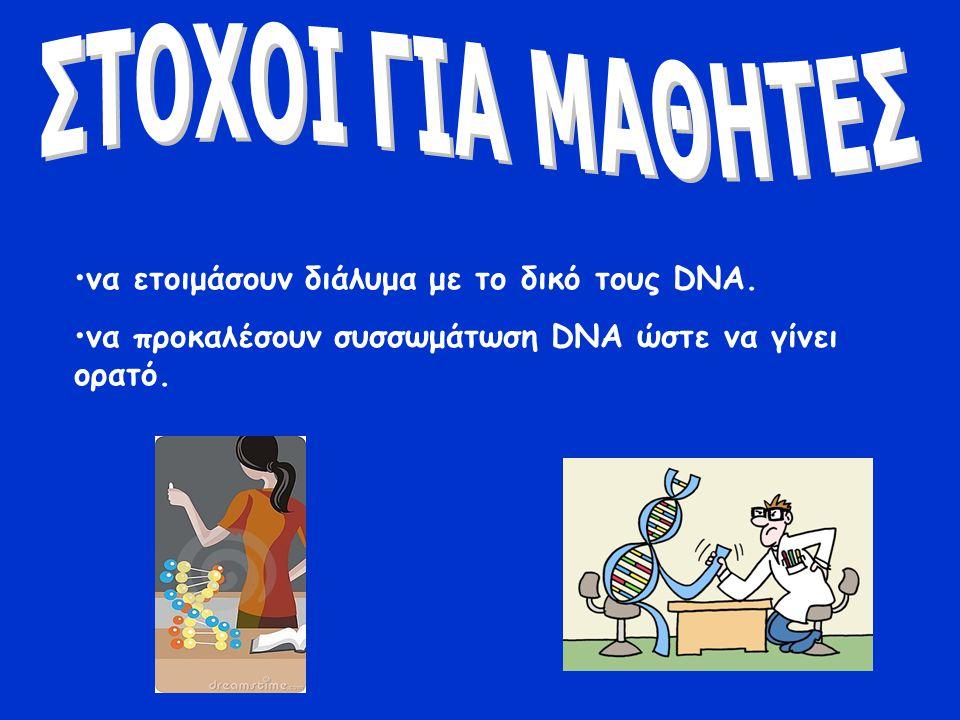 ΣΤΟΧΟΙ ΓΙΑ ΜΑΘΗΤΕΣ να ετοιμάσουν διάλυμα με το δικό τους DNA.