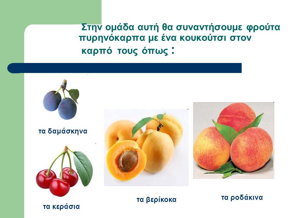 Στην ομάδα αυτή θα συναντήσουμε φρούτα πυρηνόκαρπα με ένα κουκούτσι στον καρπό τους όπως :