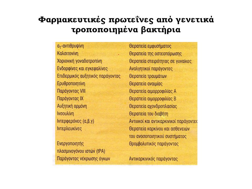 Φαρμακευτικές πρωτεΐνες από γενετικά τροποποιημένα βακτήρια