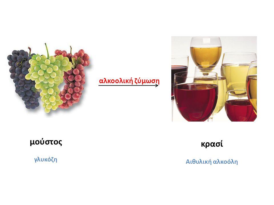 αλκοολική ζύμωση μούστος γλυκόζη κρασί Αιθυλική αλκοόλη
