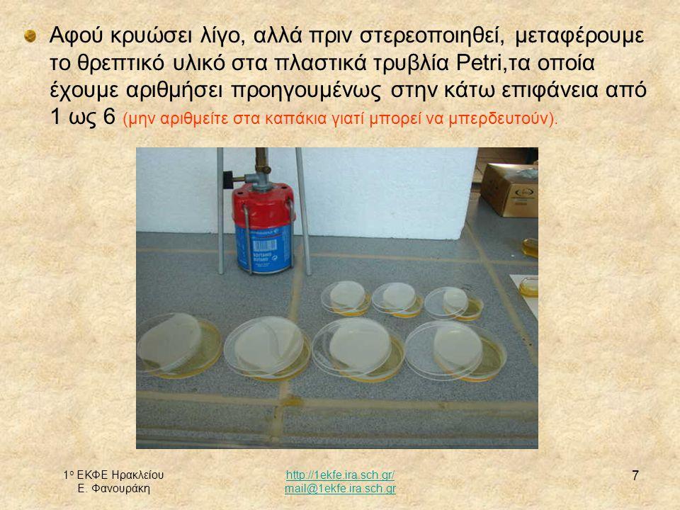 Αφού κρυώσει λίγο, αλλά πριν στερεοποιηθεί, μεταφέρουμε το θρεπτικό υλικό στα πλαστικά τρυβλία Petri,τα οποία έχουμε αριθμήσει προηγουμένως στην κάτω επιφάνεια από 1 ως 6 (μην αριθμείτε στα καπάκια γιατί μπορεί να μπερδευτούν).