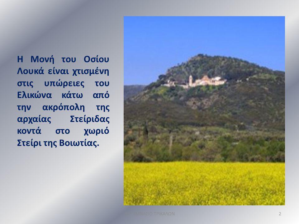 Η Μονή του Οσίου Λουκά είναι χτισμένη στις υπώρειες του Ελικώνα κάτω από την ακρόπολη της αρχαίας Στείριδας κοντά στο χωριό Στείρι της Βοιωτίας.