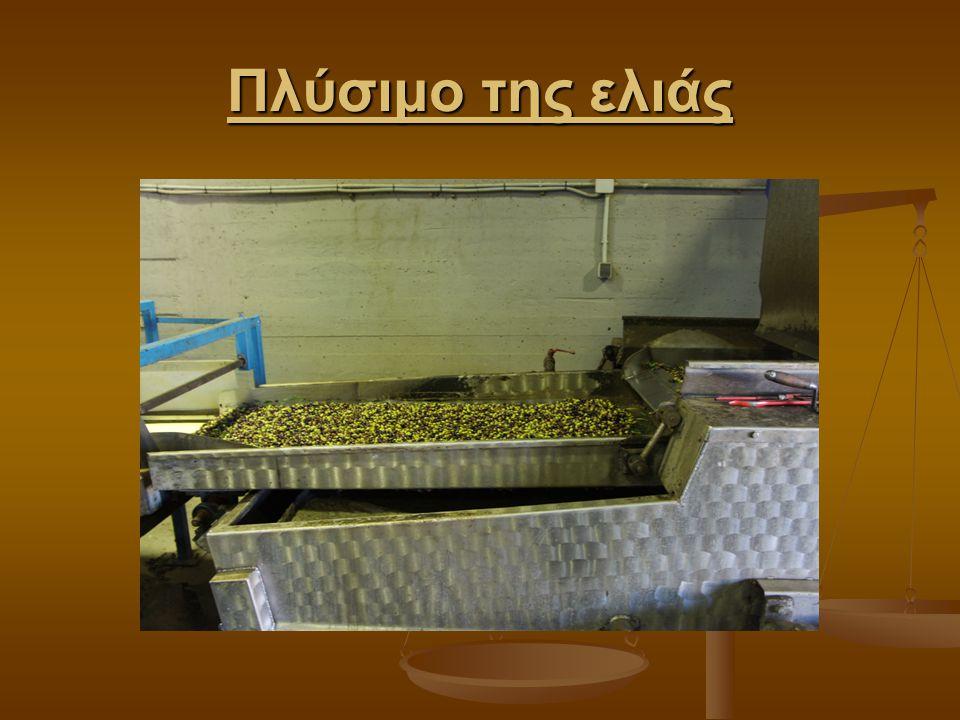Πλύσιμο της ελιάς
