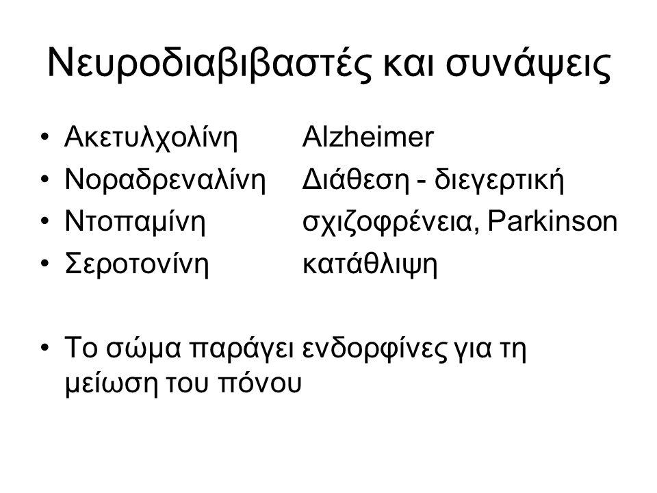 Νευροδιαβιβαστές και συνάψεις