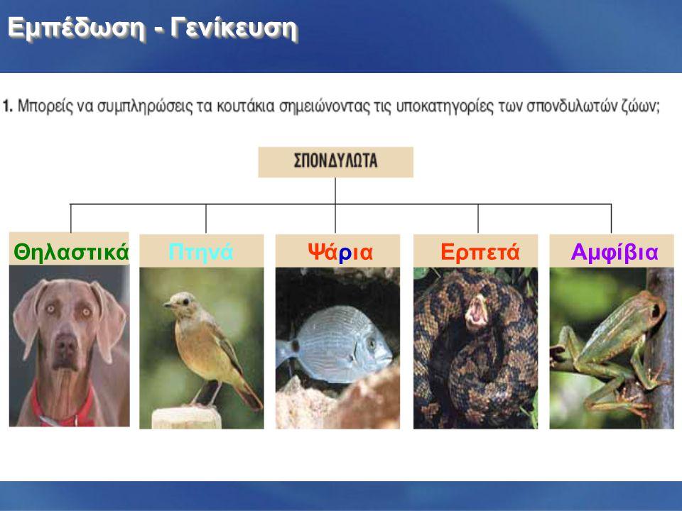 Εμπέδωση - Γενίκευση Θηλαστικά Πτηνά Ψάρια Ερπετά Αμφίβια