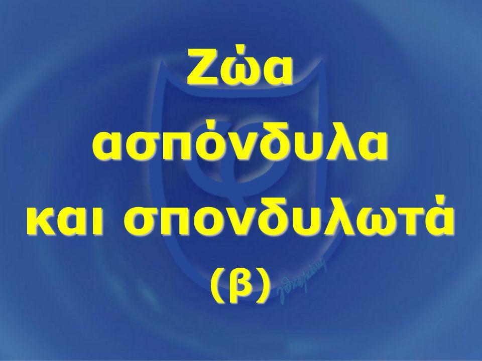 Ζώα ασπόνδυλα και σπονδυλωτά (β)