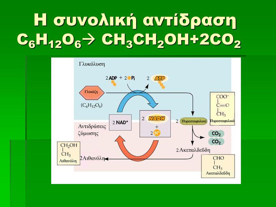Η συνολική αντίδραση C6H12O6 CH3CH2OH+2CO2
