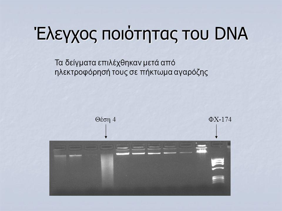 Έλεγχος ποιότητας του DNA