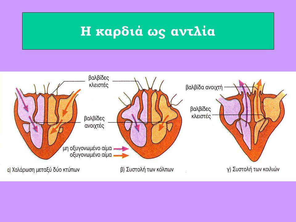 Η καρδιά ως αντλία