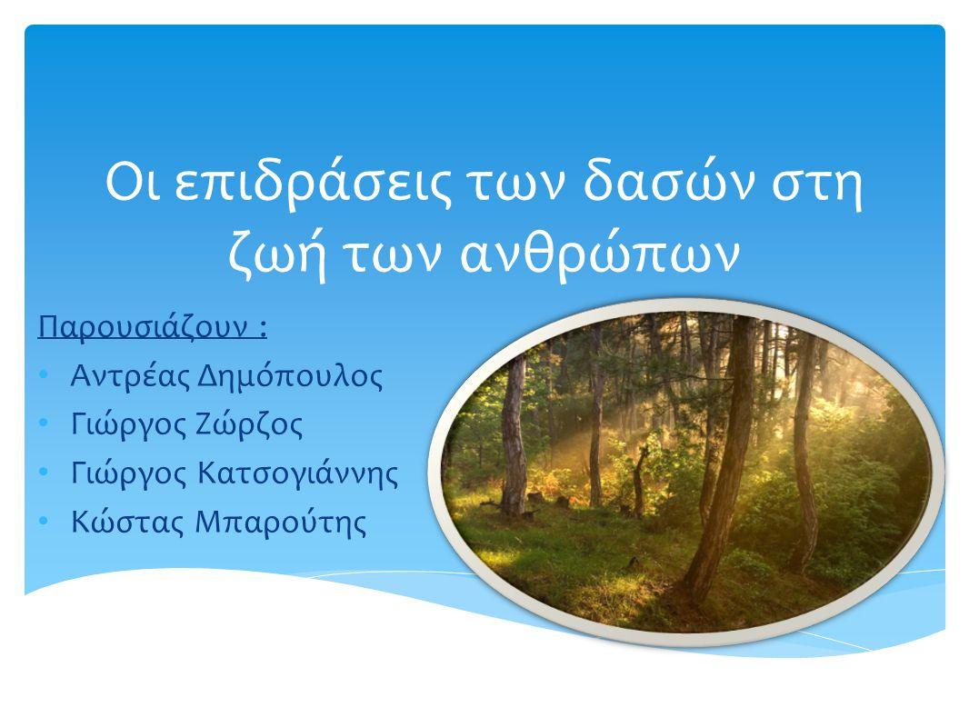 Οι επιδράσεις των δασών στη ζωή των ανθρώπων