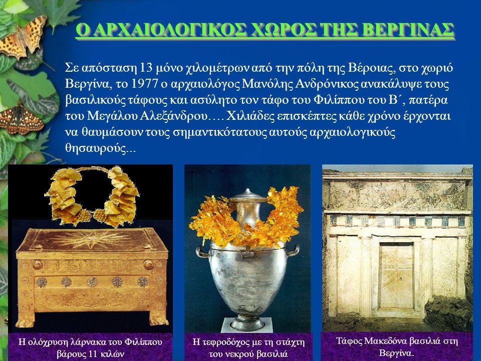 Ο ΑΡΧΑΙΟΛΟΓΙΚΟΣ ΧΩΡΟΣ ΤΗΣ ΒΕΡΓΙΝΑΣ