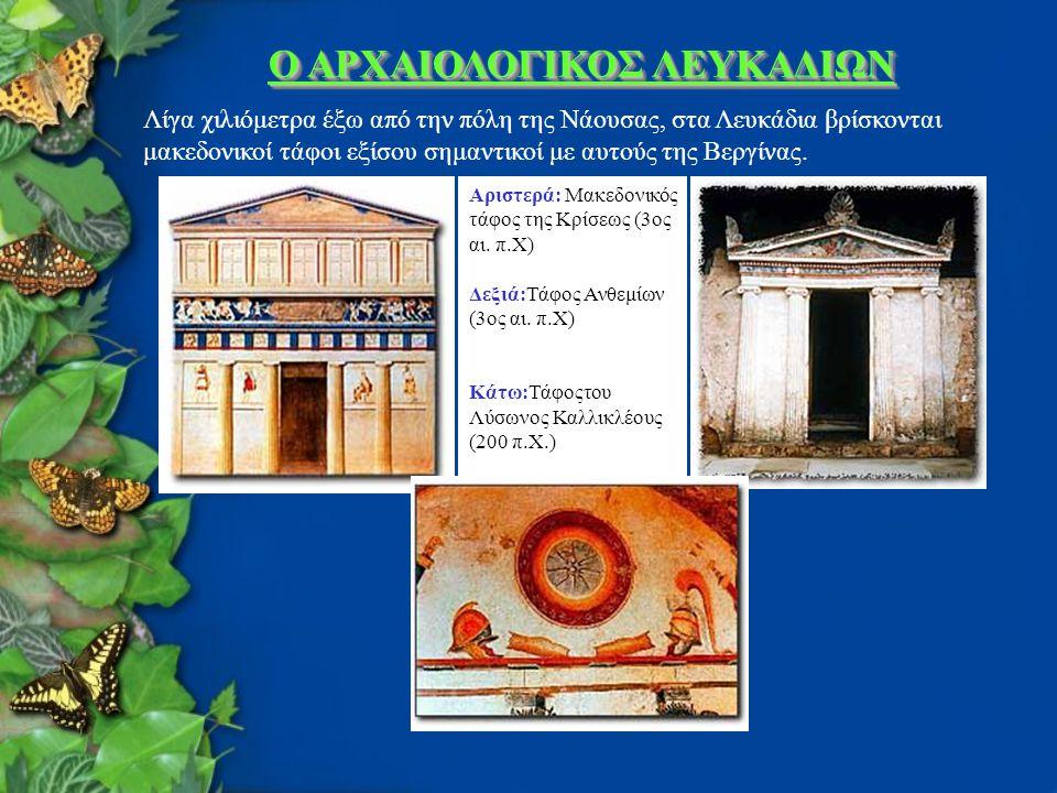 Ο ΑΡΧΑΙΟΛΟΓΙΚΟΣ ΛΕΥΚΑΔΙΩΝ