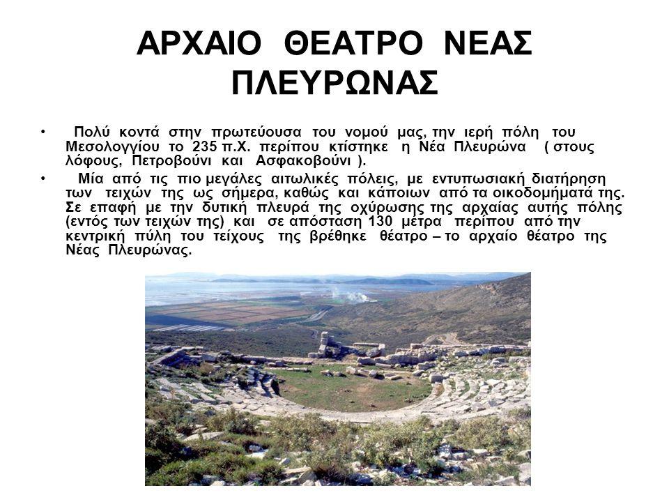ΑΡΧΑΙΟ ΘΕΑΤΡΟ ΝΕΑΣ ΠΛΕΥΡΩΝΑΣ