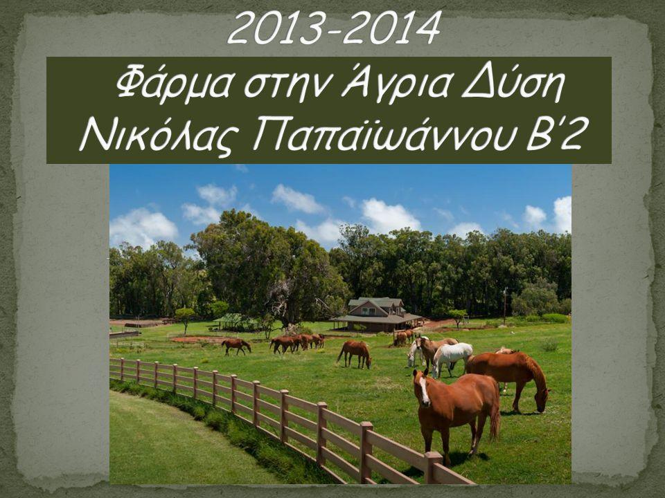 2013-2014 Φάρμα στην Άγρια Δύση Νικόλας Παπαϊωάννου Β'2