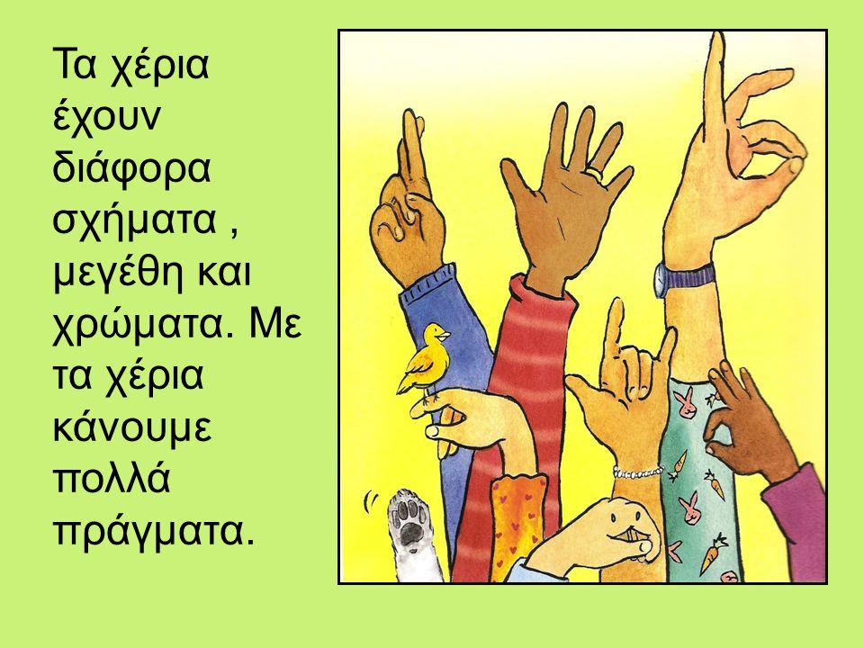 Τα χέρια έχουν διάφορα σχήματα , μεγέθη και χρώματα