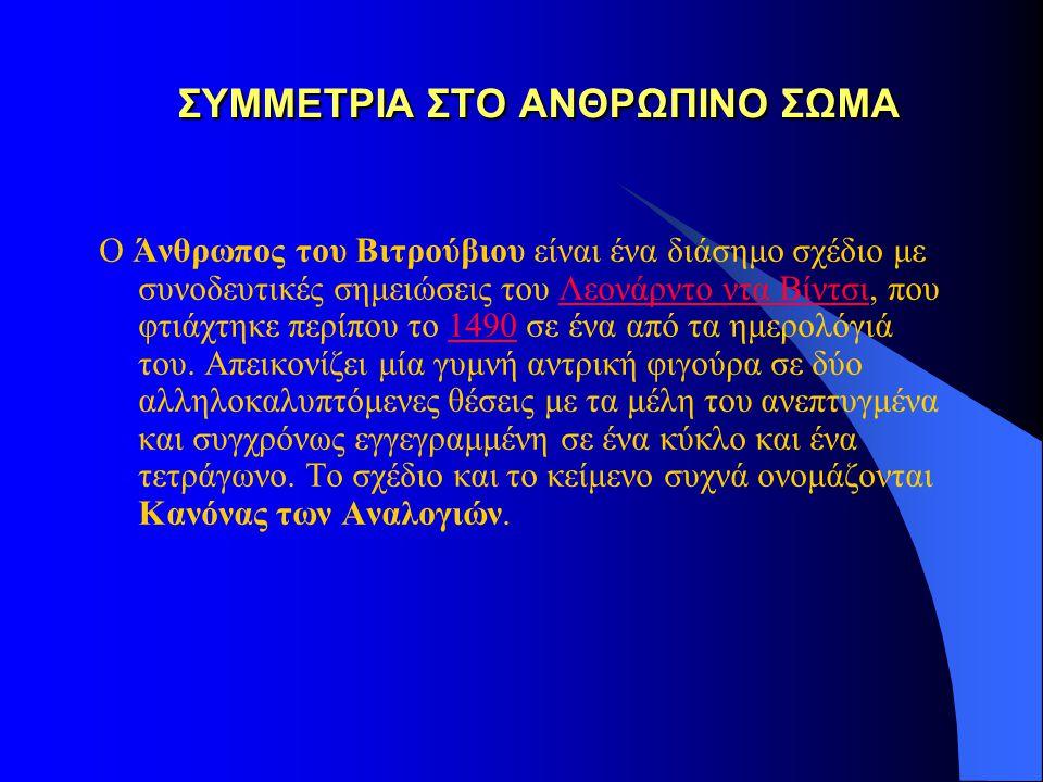 ΣΥΜΜΕΤΡΙΑ ΣΤΟ ΑΝΘΡΩΠΙΝΟ ΣΩΜΑ