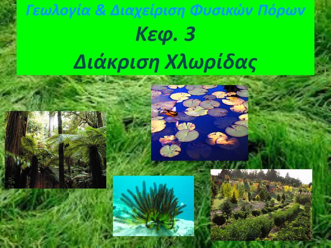 Γεωλογία & Διαχείριση Φυσικών Πόρων Κεφ. 3 Διάκριση Χλωρίδας