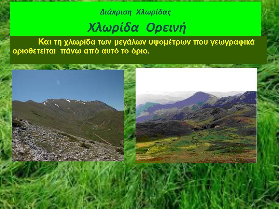 Διάκριση Χλωρίδας Χλωρίδα Ορεινή