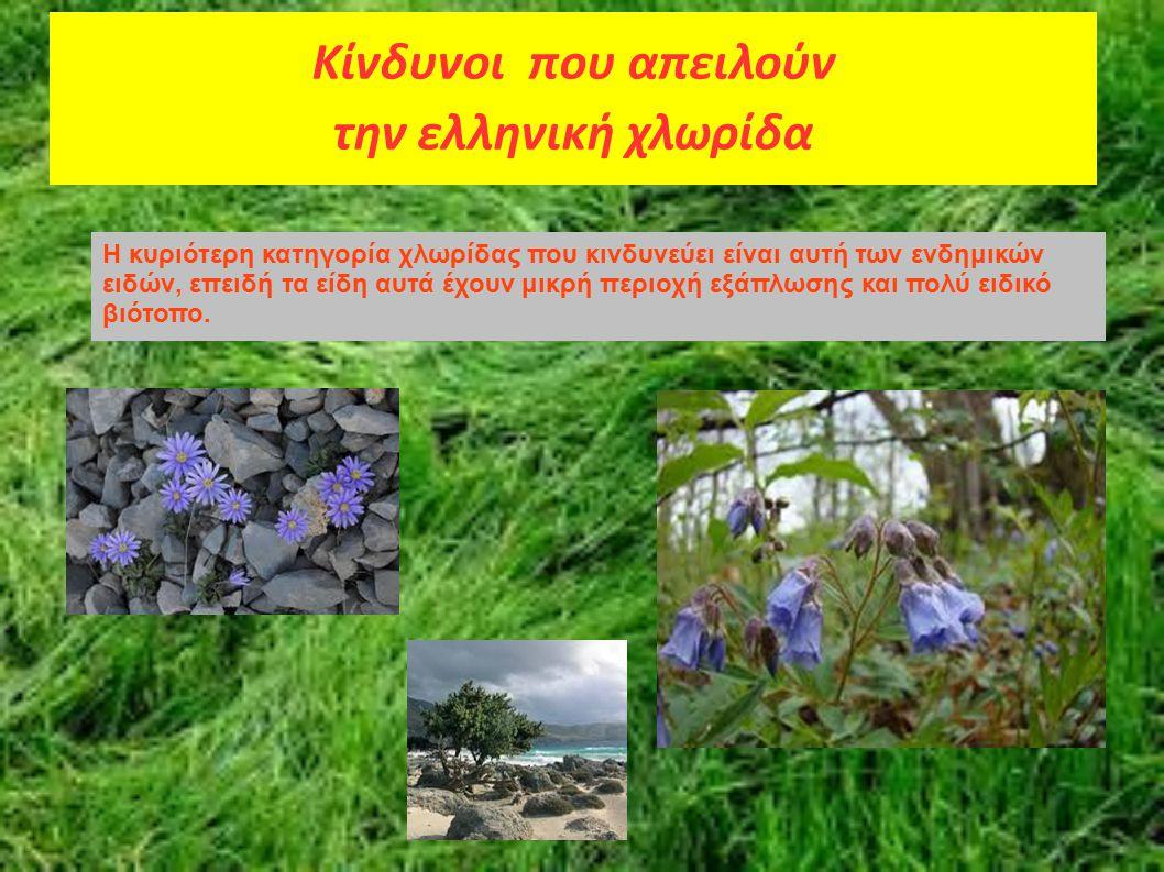 Κίνδυνοι που απειλούν την ελληνική χλωρίδα